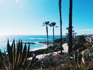 california-housing